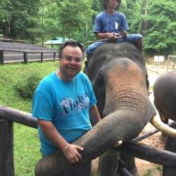 Buhalis Elephant